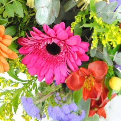 Enviar Flores Con Rosa Fucsia, Clavel Amarillo, Gerbera Naranja, Gerbera Fucsia, Alstroemeria Roja, Solidago, Hipericum Rojo, Alelí Azul, Tulipán Amarillo