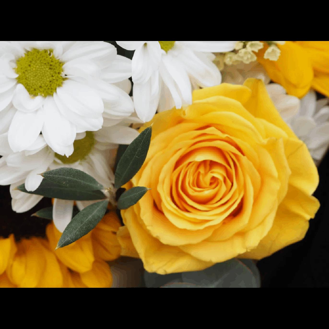 flores rosas amarillas margaritas girasoles