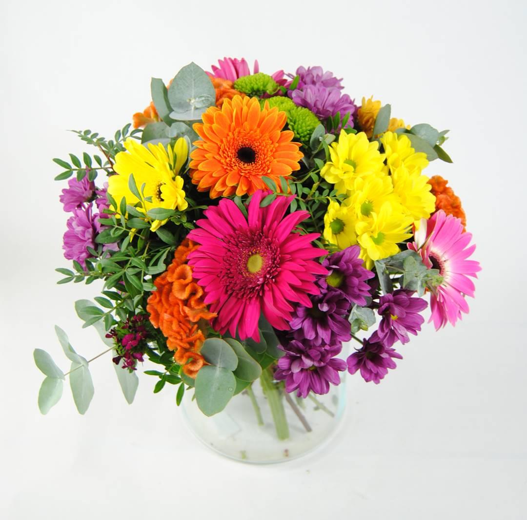 Enviar flores con margarita amarilla, margarita fucsia, margarita naranja, margarita verde, celosía naranja, gerbera fucsia, gerbera naranja, gerbera amarilla, gerbera rosa - originalflor