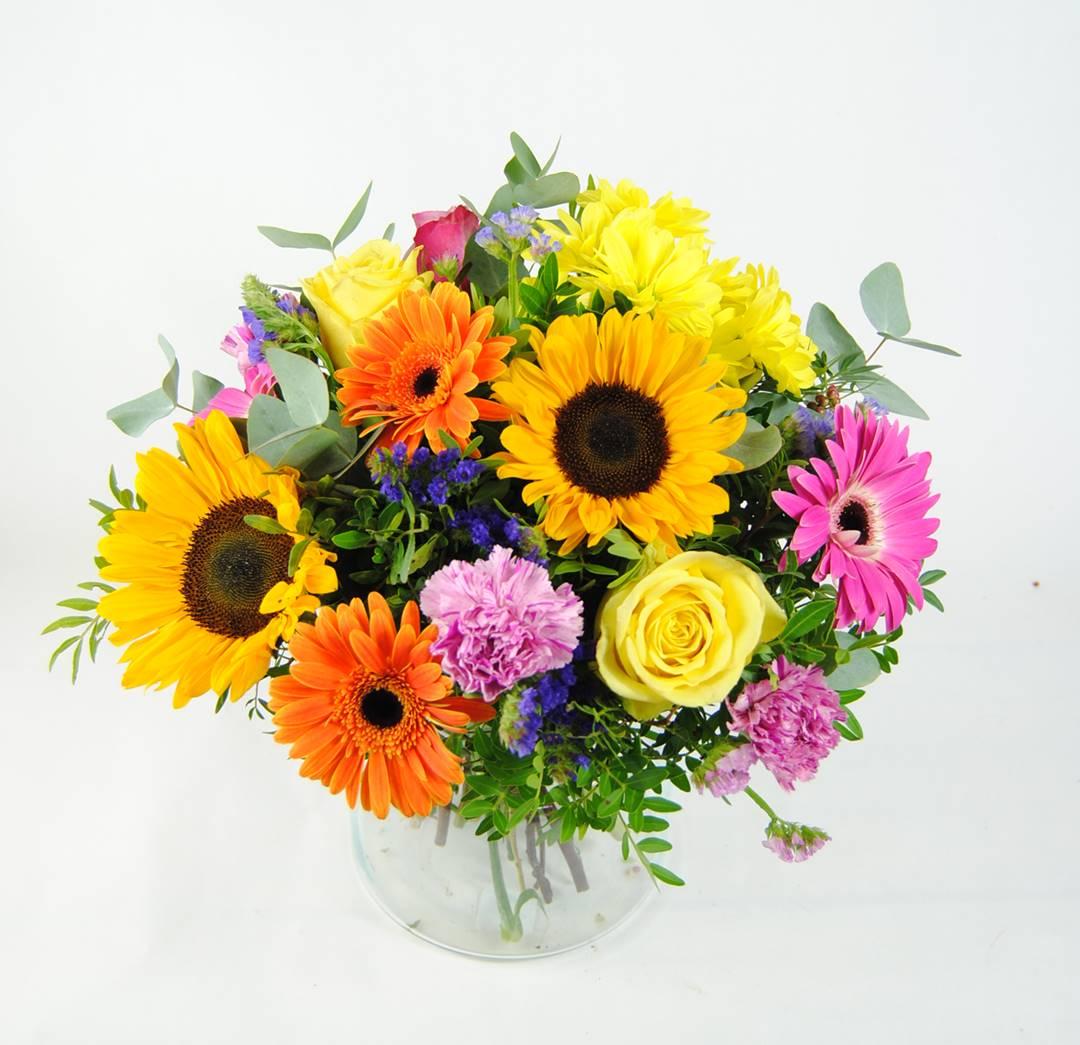 girasoles, gerberas fucsia, gerbera naranja, flores margarita amarilla, clavel jaspeado, rosa amarilla, rosa fucsia, estaticeazul, eucalipto - originalflor