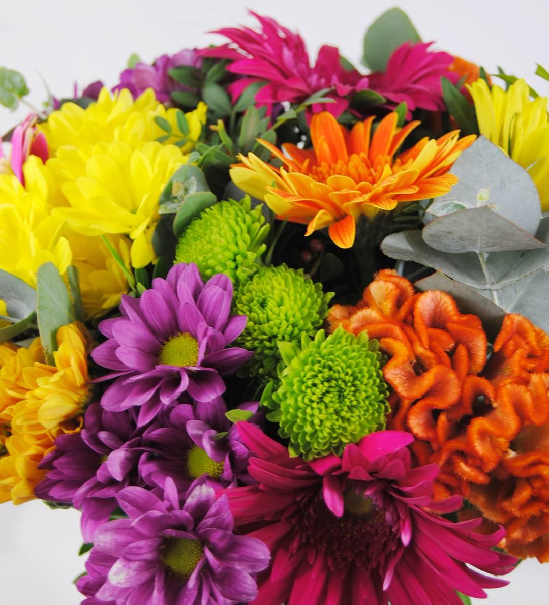 ramo de flores con margarita amarilla, margarita fucsia, margarita naranja, margarita verde, celosía naranja, gerbera fucsia, gerbera naranja, gerbera amarilla, gerbera rosa - originalflor